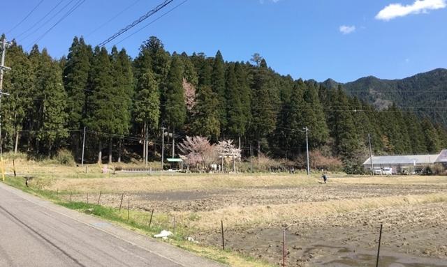 根道神社までの道のり写真